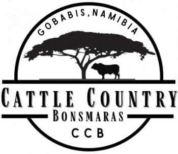 Cattle Country Bonsmara