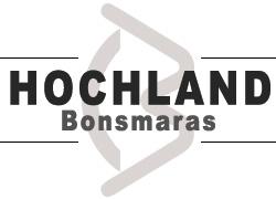 Hochland Bonsmaras