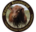 Wagner Bonsmaras