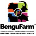 BenguFarm